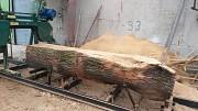 Услуги пилорамы и сушки древесины Одеса