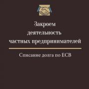 Закрытие Флп, Фоп, Спд, Чп, Ликвидация Флп, Фоп, Спд, Чп (недорого) Дніпро